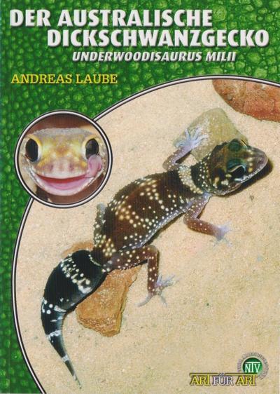 Der Australische Dickschwanzgecko