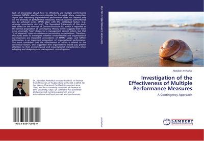 Investigation of the Effectiveness of Multiple Performance Measures