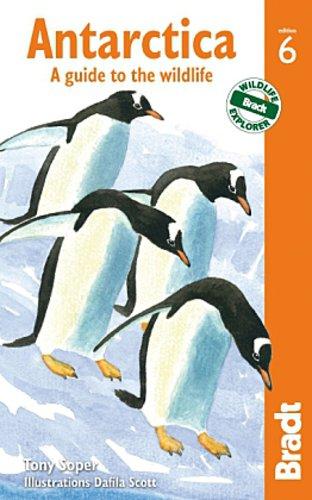 Antarctica Tony Soper