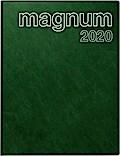 rido Buchkalender 2019 magnum PVC grün
