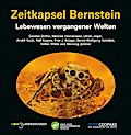 Zeitkapsel Bernstein - Lebewesen vergangener Welten