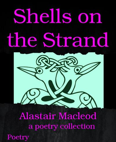 Shells on the Strand