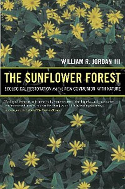 The Sunflower Forest