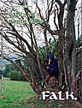 tales of roinn tìde, Band 4