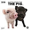 The Pig 2019. Artlist Collection Broschürenkalender