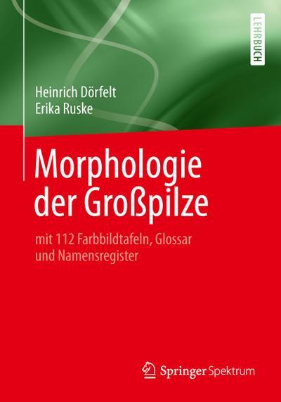 Morphologie der Großpilze