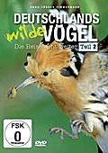 Deutschlands wilde Vögel - Teil 2 - Die Reise ...