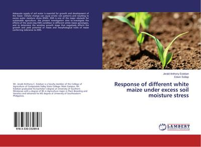 Response of different white maize under excess soil moisture stress