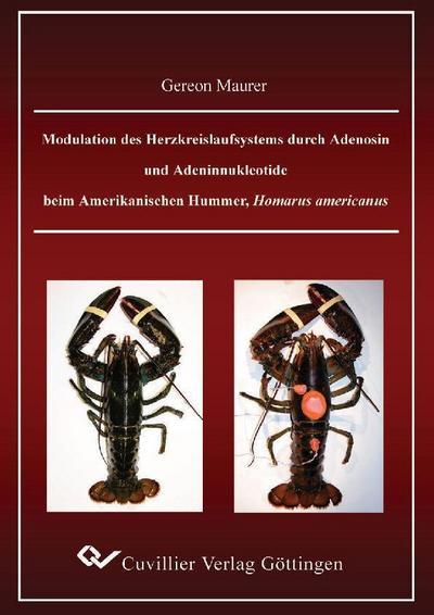 Modulation des Herzkreislaufsystems durch Adenosin und Adeninnukleotide beim Amerikanischen Hummer, Homarus americanus