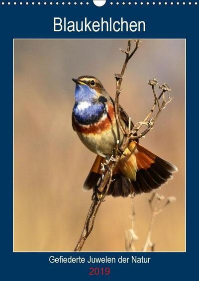 Blaukehlchen. Gefiederte Juwelen der Natur. (Wandkalender 2019 DIN A3 hoch)