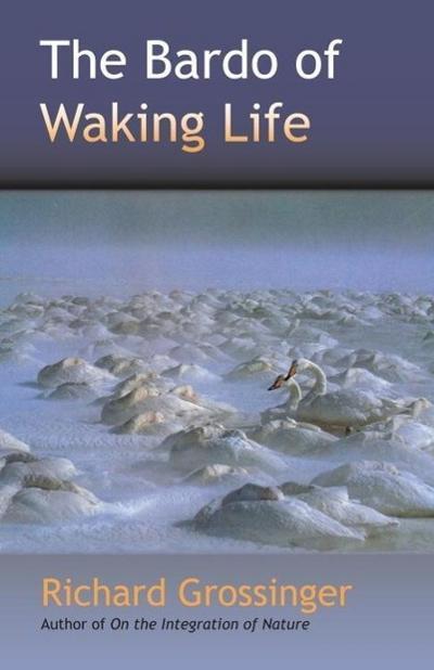 The Bardo of Waking Life
