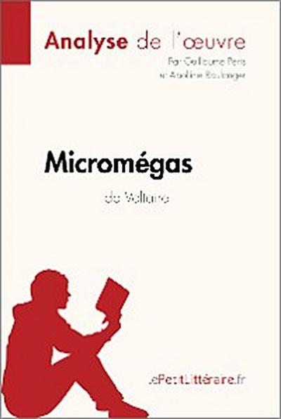 Micromégas de Voltaire (Analyse de l'oeuvre)