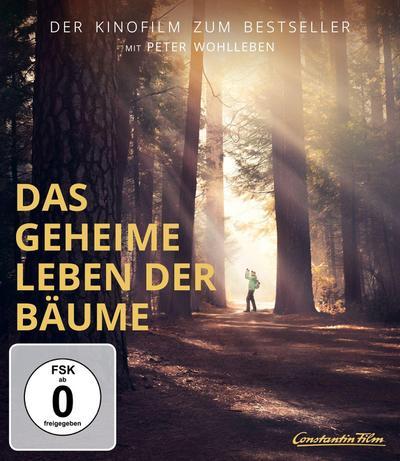 Das geheime Leben der Bäume. Mediabook