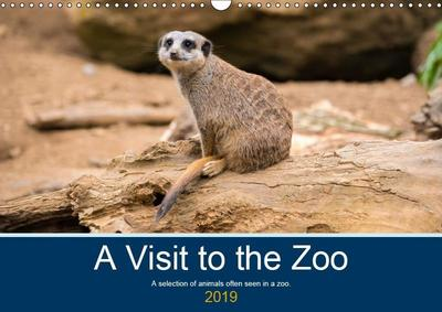 A Visit to the Zoo (Wall Calendar 2019 DIN A3 Landscape)