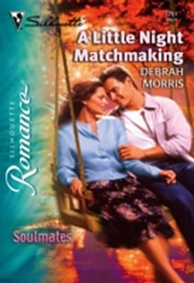 Little Night Matchmaking (Mills & Boon Silhouette)