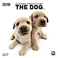 The Dog 2019. Artlist Collection Broschürenkalender