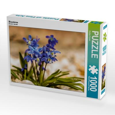 Blausterne (Puzzle)