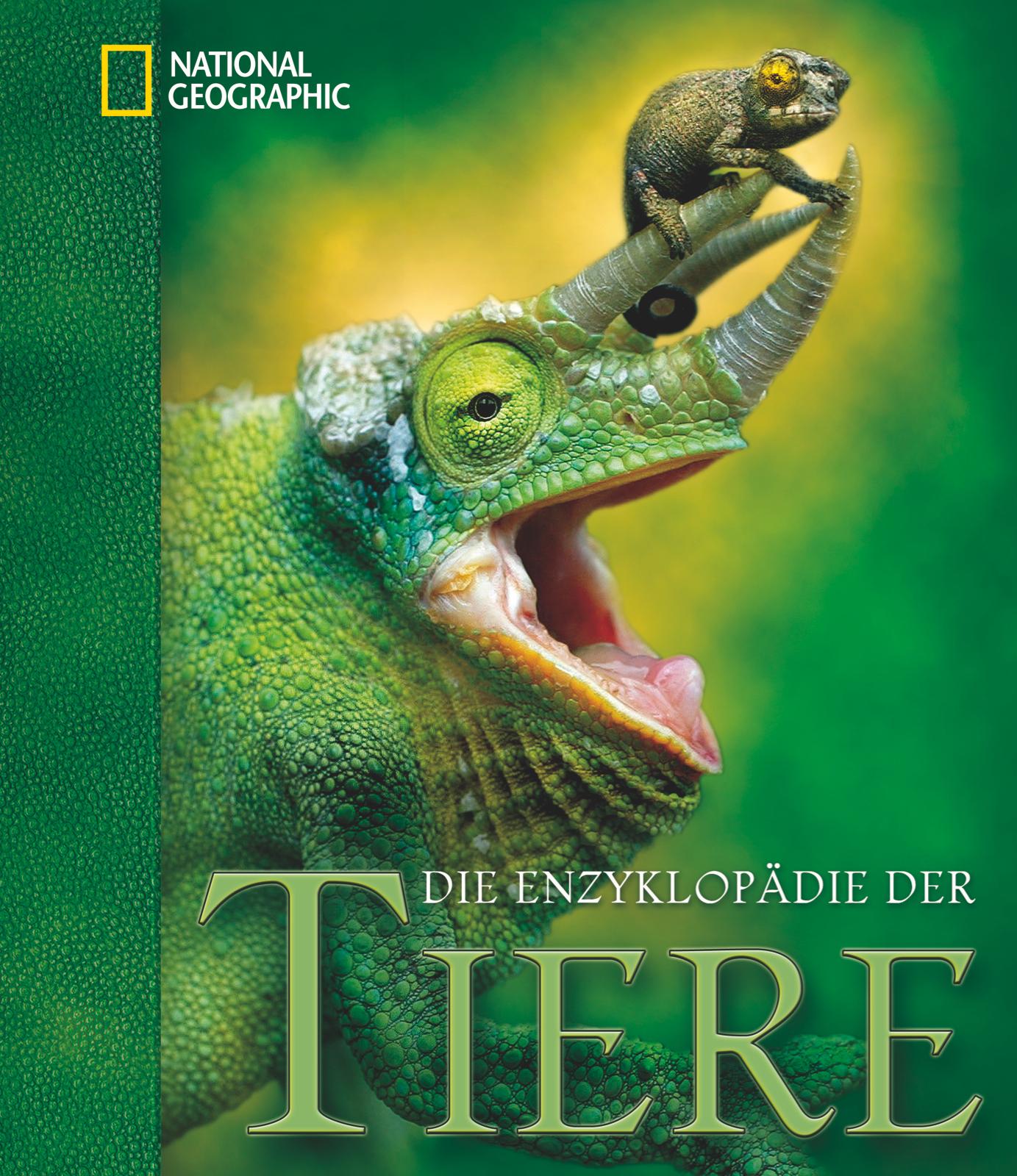 NEU Die Enzyklopädie der Tiere Jenni Bruce 902466