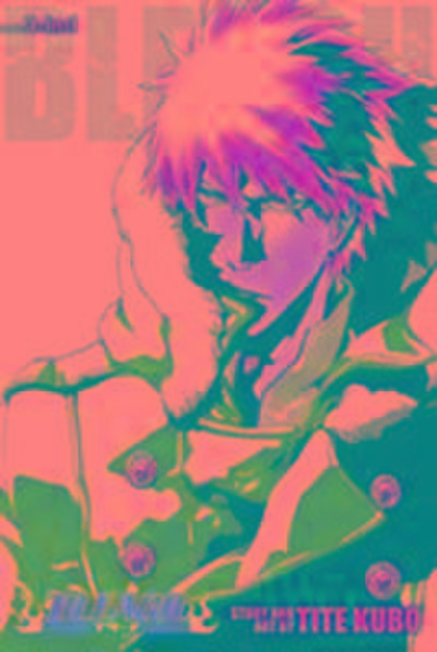 Bleach (3-in-1 Edition), Vol. 17