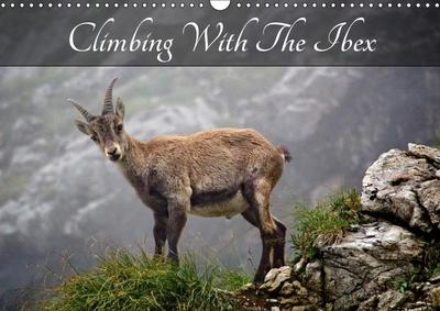 Climbing With The Ibex (Wall Calendar 2019 DIN A3 Landscape)