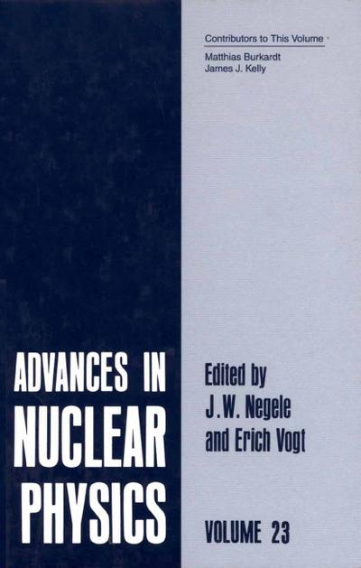 Advances in Nuclear Physics. Vol.23