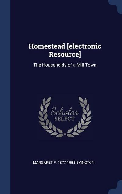 Homestead [Electronic Resource]: The Households of a Mill Town