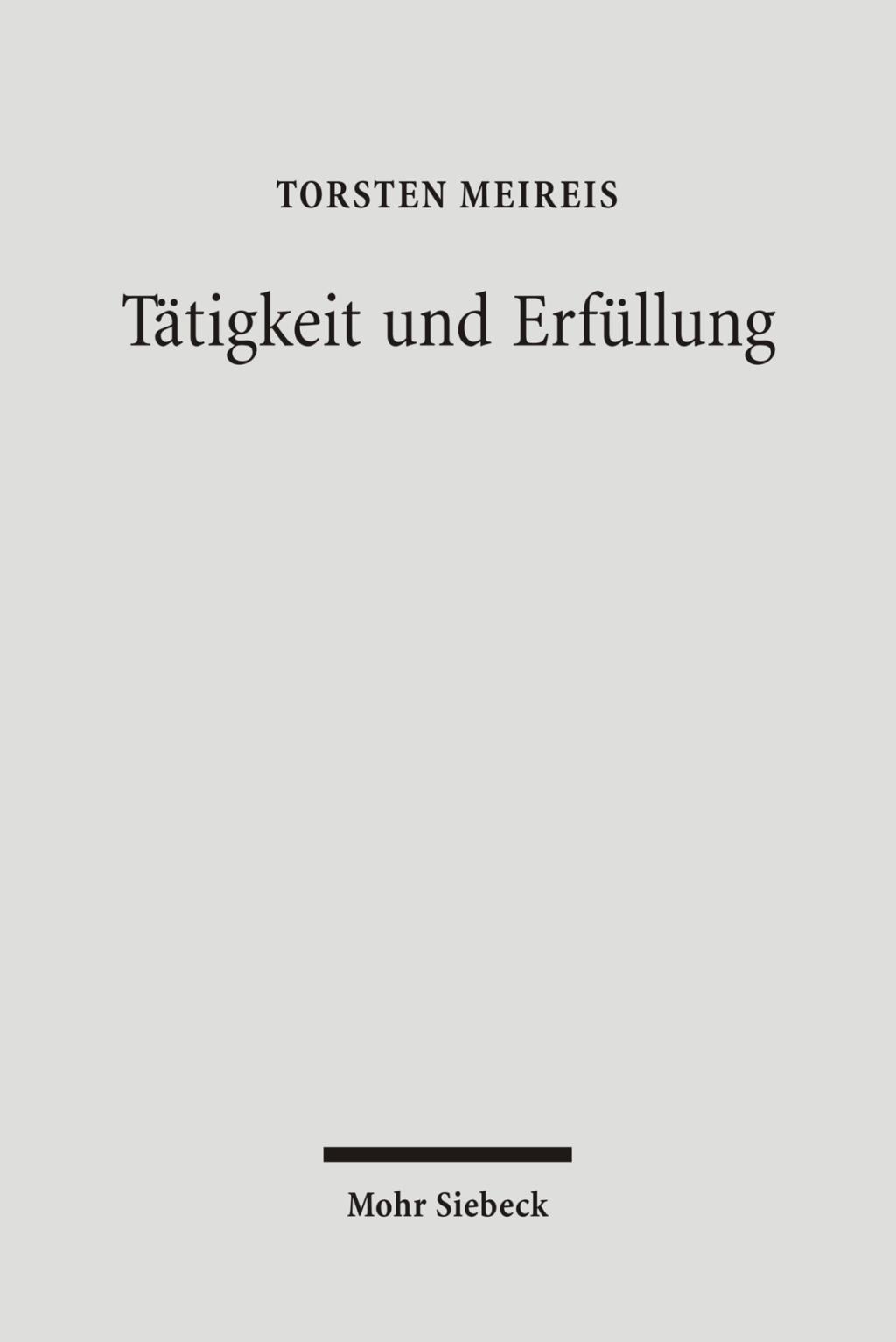 Tätigkeit und Erfüllung Torsten Meireis