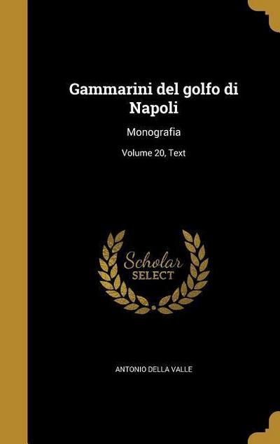 ITA-GAMMARINI DEL GOLFO DI NAP