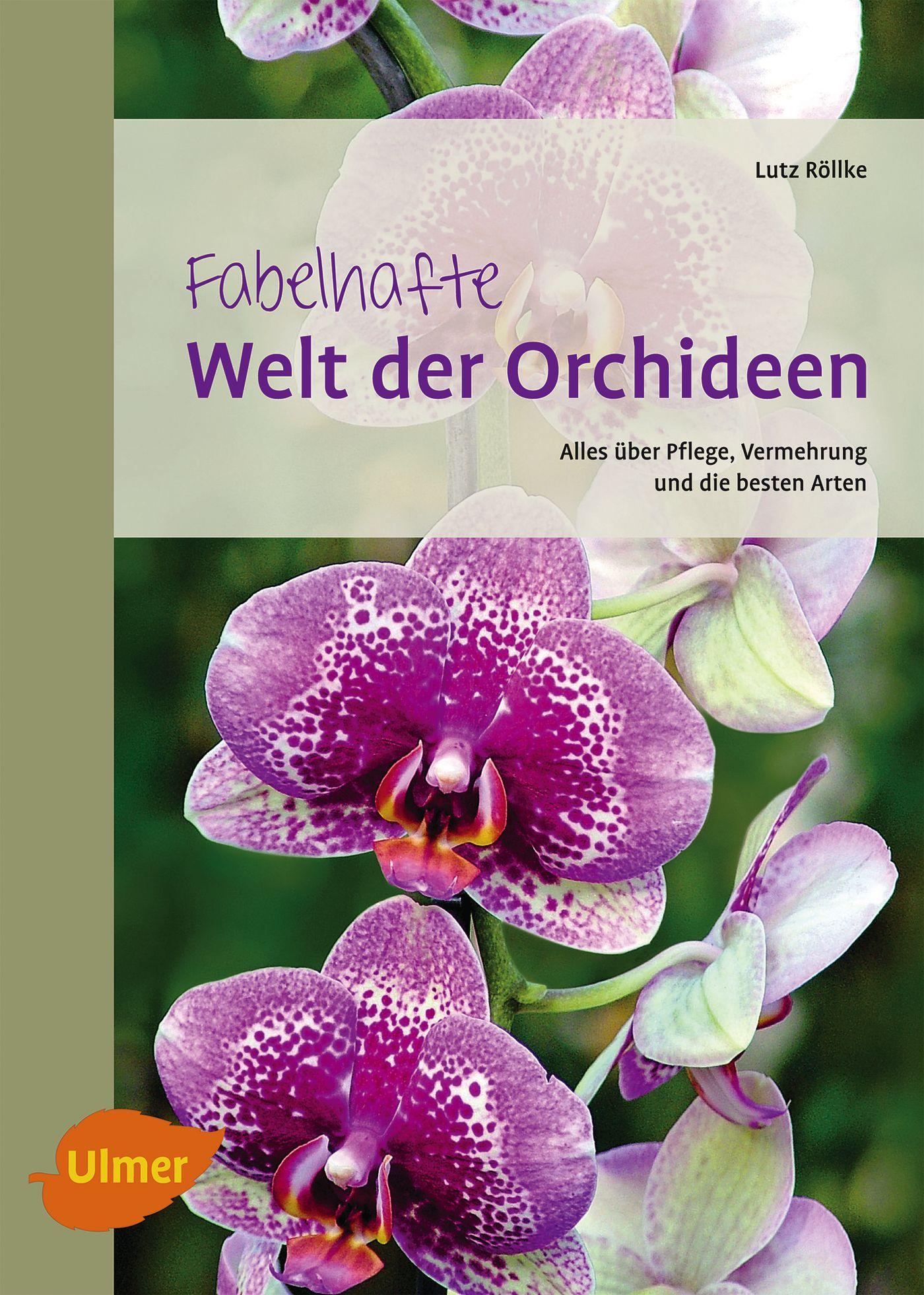 fabelhafte welt der orchideen lutz r llke ebay. Black Bedroom Furniture Sets. Home Design Ideas