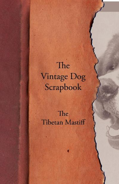 The Vintage Dog Scrapbook - The Tibetan Mastiff