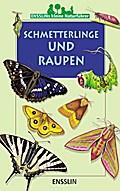 Schmetterlinge und Raupen.  durchg. farb. Ill.
