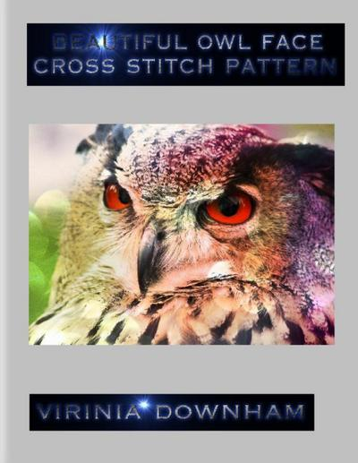 Beautiful Owl Face Cross Stitch Pattern