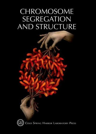 Chromosome Segregation & Structure