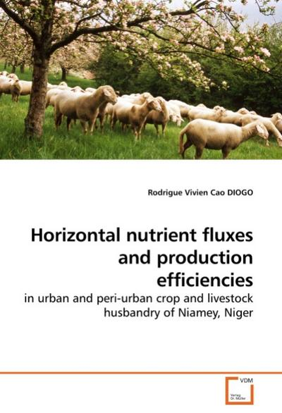 Horizontal nutrient fluxes and production efficiencies