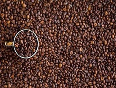 Kaffeebohnen - 500 Teile (Puzzle)