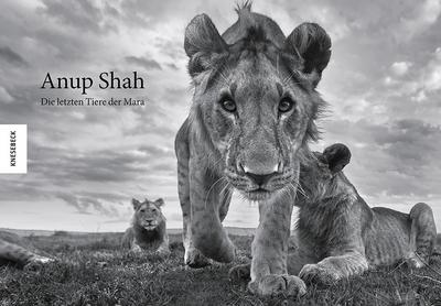 Anup Shah - Tiere