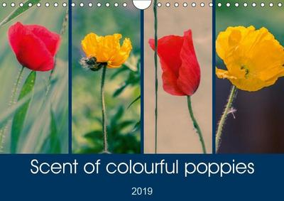 Scent of colourful poppies (Wall Calendar 2019 DIN A4 Landscape)