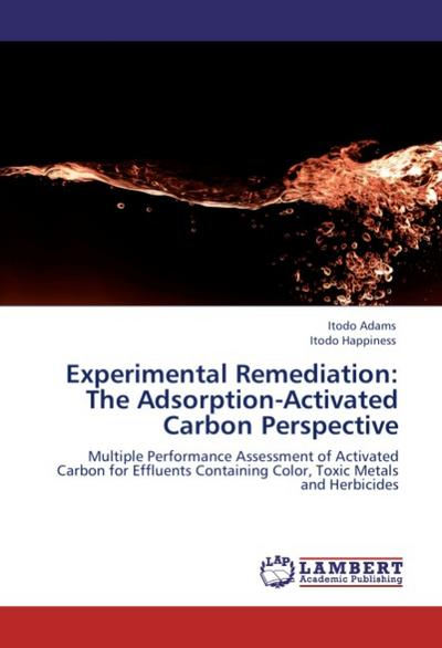Experimental Remediation: The Adsorption-Activated Carbon Perspective