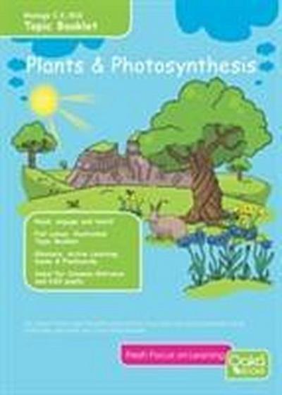 PLANTS PHOTOSYNTHESIS