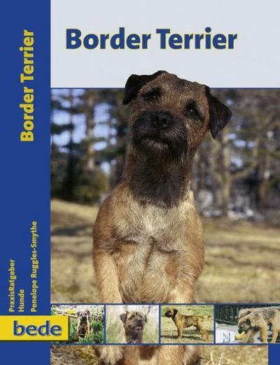PraxisRatgeber Border Terrier