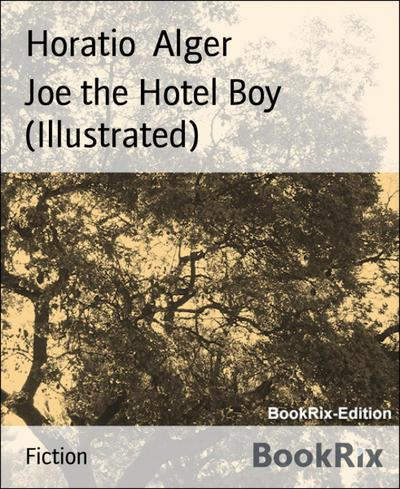 Joe the Hotel Boy (Illustrated)