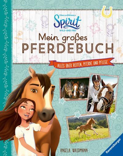Dreamworks Spirit Wild und Frei: Mein großes Pferdebuch