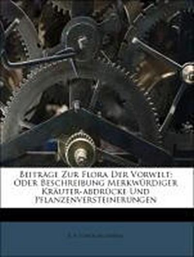 Beiträge Zur Flora Der Vorwelt: Oder Beschreibung Merkwürdiger Kräuter-abdrücke Und Pflanzenversteinerungen