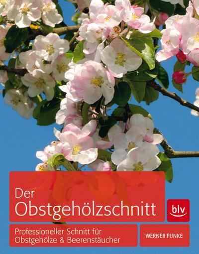 Der Obstgehölzschnitt; Professioneller Schnitt für Obstgehölze & Beerensträucher   ; Deutsch; 262 schw.-w. Abb. 177 farb. Abb. 4 Ill. -