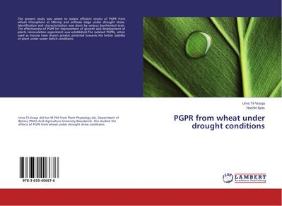 PGPR from wheat under drought conditions