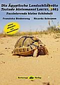 Die Ägyptische Landschildkröte Testudo kleinmanni LORTET, 1883