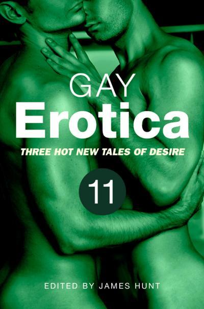 Gay Erotica, Volume 11