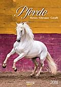 Pferde 2018 Kalender