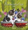 Schmusekatzen 2018. Postkartenkalender