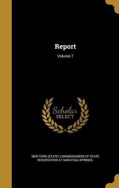 REPORT V07